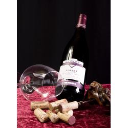 Bourgogne Domaine Prunier Beaune